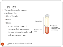 Anatomy And Physiology Cells And Tissues Chapter 19 The Cardiovascular System The Blood Principles Of
