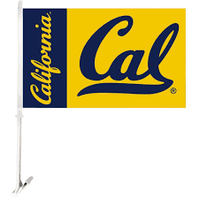 University Of Michigan Flag University Of Georgia Flags U0026 Flag Poles Outdoor Decor The