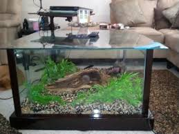 nice terrarium coffee table with aquarium fish tank coffee table 8