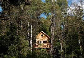 photos photos the best luxury tree houses around the world that
