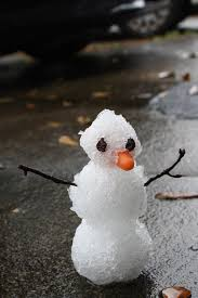 attention all of florida i just made a snowman in my backyard
