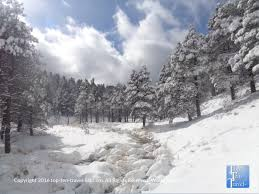 9 things to do this winter in flagstaff arizona top ten travel