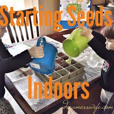adventures in gardening part 1 starting seeds indoors a