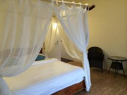 canap駸 de luxe 台東縣慢活東河民宿 islandway bed and breakfast 線上訂房 agoda com