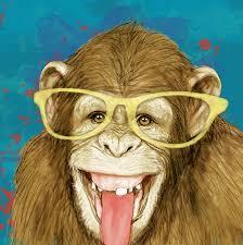 monkey stylised drawing art poster drawing by kim wang