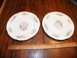homer laughlin vintage vintage set of 2 homer laughlin china floral 9 3 8 dinner plates