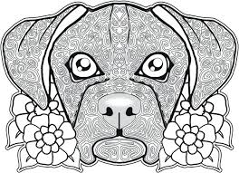 cute pitbull puppy coloring pages face free dog adults realistic