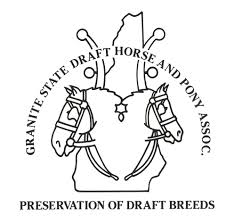 new hampshire state 4 h horse show trophies and awards