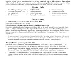 Pmo Resume Sample by Cfo Resume Examples Resume For Your Job Application