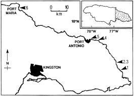 Blank Map Of Dominican Republic by Scripta Geologica