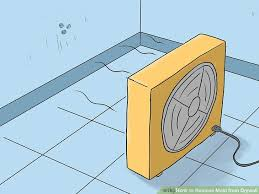Types Of Mold In Bathroom by 2 Easy Ways To Remove Mold From Drywall Wikihow