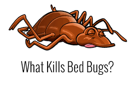 Bed Bug Heat Treatment Cost Estimate by Bed Bug Tips Archives Page 2 Of 4 Bed Bug Treatment Site
