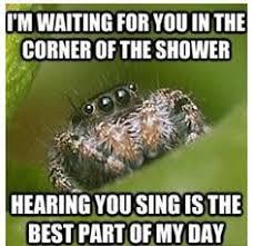 Shower Spider Meme - identify this spider warning pic update page 2 babycenter