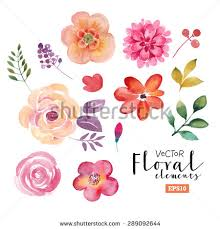 wedding flowers drawing flower stock images royalty free images vectors