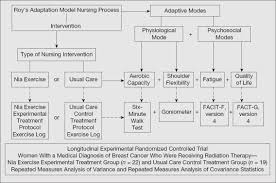 applying conceptual models of nursing quality improvement