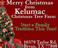 home of kelumac a texas choose and cut christmas tree farm bed