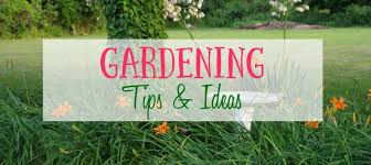 Garden Tips And Ideas Get Your Garden Growing Printable Vegetable Gardening Guide The