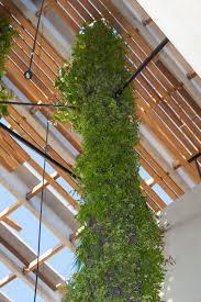 Vertical Gardens Miami - 153 best vertical garden la images on pinterest landscaping