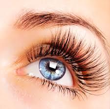 interpretation of a dream in which you saw eyelashes
