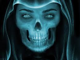 skulls images pixabay free pictures