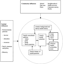 theoretical framework research paper the health promoting family a conceptual framework for future