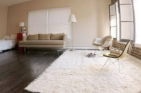 Off White Rug White Shag Area Rug Area Rugs Grey And White Area Rug Best Design