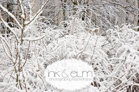 photography backdrops photography backdrop winter