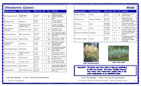 water efficient plants for the foothills zone 7 nevada coun