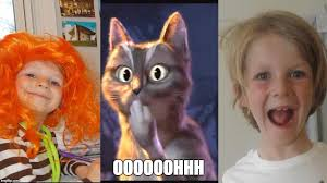 Ooh Face Meme - cat ooh puss in boots memes imgflip