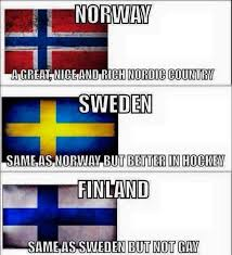 Suomi Memes - everything you need to know about nordics meme by leeviwallenius