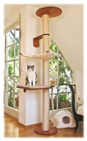best 25 best cat tree ideas on cool cat trees cat