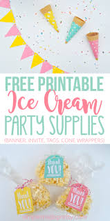 party items summer party using dollar store items free printables