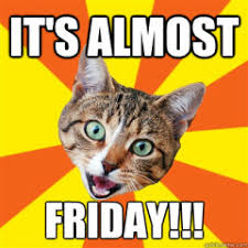 Almost Friday Meme - funny meme archives page 585 of 982 cat planet cat planet
