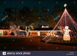 decorations front garden time twinkling lights palm