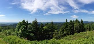 Baden Im Harz Gepflegte Preiswerte Ferienwohnungen Mit Garten Im Harz