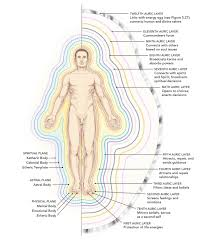 Human Anatomy Planes Of The Body A Complete Guide To The Human Energy Fields And Auric Body