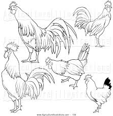 agriculture clipart of a digital collage of rooster black and