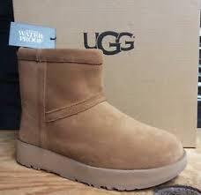 uggs on sale womens ebay ugg australia womens mini waterproof suede boot chestnut