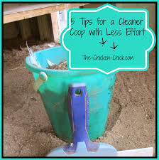 Clean Cleaner by The Chicken 5 Tips For A Cleaner Coop With Less Effort