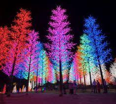 outdoor neon lights 3 nastygirl minkpink gal x minkpink