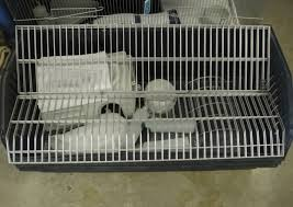 Guinea Pig Cages Cheap Guinea Pig U0026 Rabbit Cages Select Pets Bicton