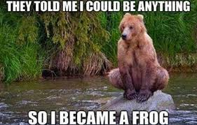 Bear Memes - bear meme dump album on imgur