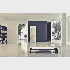 fireplace cool ethanol fireplace inserts home design new best in