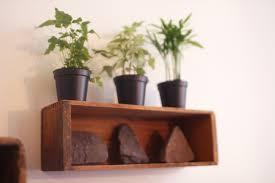 plants ergonomic plant shelf wall ideas full image for plant