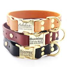 buckle black friday best 25 brass buckle ideas on pinterest did goldie hawn die