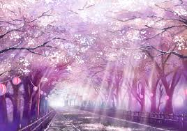 cherry blossom tree cherry blossom tree anime wallpaper