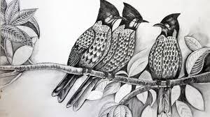 pencil sketches of birds drawing pencil