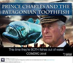 Prince Charles Meme - how the patagonian toothfish became the star of charles black