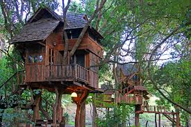 treehouses small house bliss
