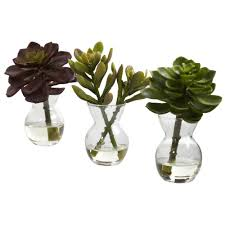nearly natural succulent arrangements set of 3 4954 s3 the